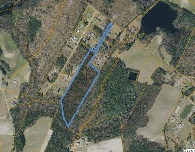 Galivants Ferry SC Residential Lots & Land For Sale: $135,000