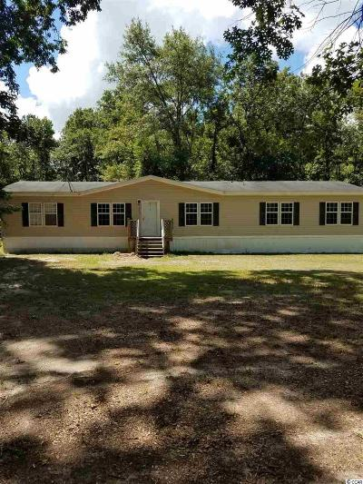 Georgetown Single Family Home For Sale: 376 Ellis Landing Rd