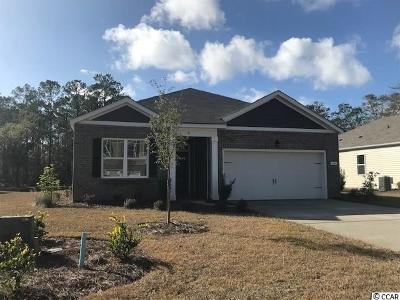 Pawleys Island Single Family Home For Sale: 40 Parkside Drive