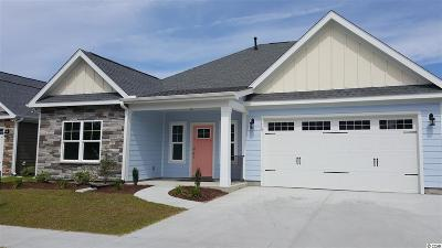 North Myrtle Beach Single Family Home For Sale: 1119 Doubloon Drive