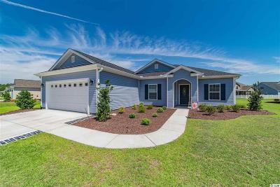 Conway Single Family Home For Sale: 360 Hillsborough Drive