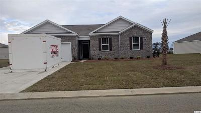 Conway Single Family Home For Sale: 393 Carmello Circle