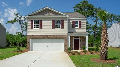 Pawleys Island Single Family Home For Sale: 129 Parkglen Drive