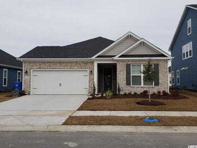 Myrtle Beach SC Single Family Home For Sale: $306,915
