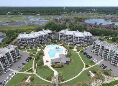 Pawleys Island Condo/Townhouse For Sale: 341 S Dunes Dr. #C-14