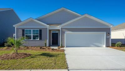 Myrtle Beach Single Family Home For Sale: 2760 Zennith Way