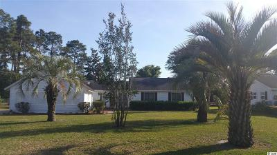 Conway Single Family Home Active-Hold-Don't Show: 134 Erskine Drive