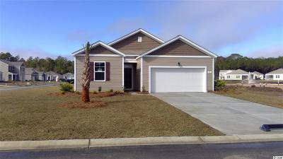 Myrtle Beach Single Family Home For Sale: 555 Affinity Dr.