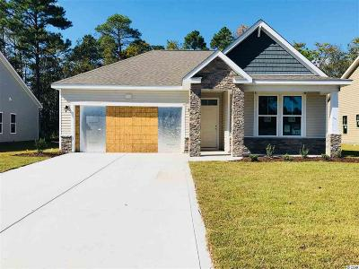 Myrtle Beach Single Family Home For Sale: 172 Legends Village Drive