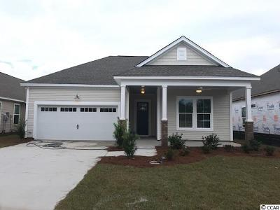 Myrtle Beach Single Family Home For Sale: 6121 Chadderton Circle