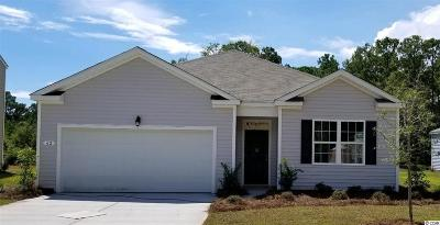 Pawleys Island Single Family Home For Sale: 15 Parkside Drive