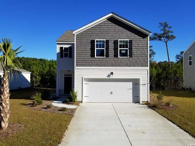 Pawleys Island Single Family Home For Sale: 103 Parkglen Drive
