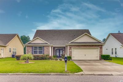 Conway Single Family Home For Sale: 825 Tilly Lake Rd.
