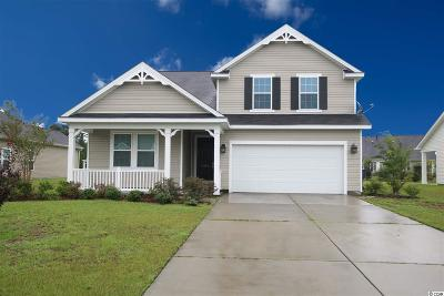 Conway Single Family Home For Sale: 1004 Blue Hole Court