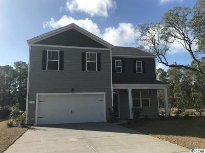 Pawleys Island Single Family Home For Sale: 16 Parkside Drive