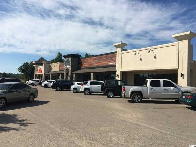 Horry County Commercial For Sale: 4007-4015 Belle Terre Blvd.