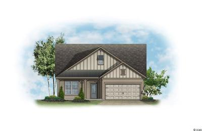 Myrtle Beach Single Family Home For Sale: 873 Berkshire Avenue