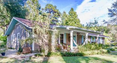 Pawleys Island Single Family Home For Sale: 876 Hagley Drive