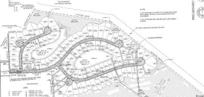 Horry County Residential Lots & Land Active Under Contract: Tbd Chavis Rd.
