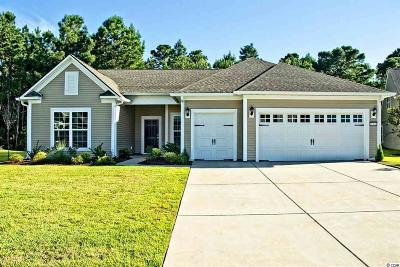Myrtle Beach, North Myrtle Beach Single Family Home For Sale: 2569 Great Scott Drive
