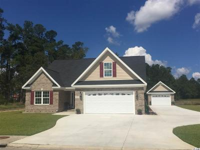 Aynor SC Single Family Home Sold: $302,265