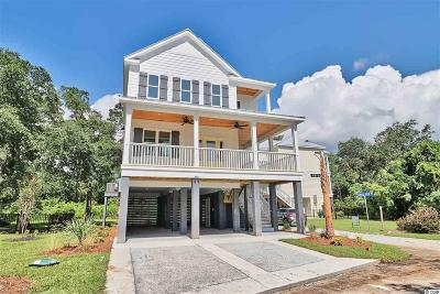 Pawleys Island Single Family Home For Sale: 14 Half Shell Court