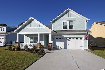 Pawleys Island Single Family Home For Sale: 133 Southgate Ct