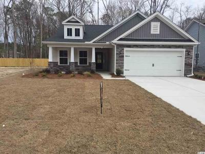Pawleys Island Single Family Home For Sale: 51 Costa Court
