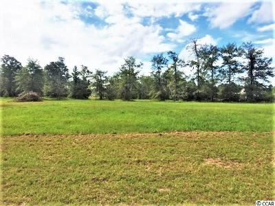 Conway SC Residential Lots & Land For Sale: $28,000