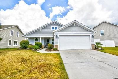 Myrtle Beach Single Family Home For Sale: 190 Sea Turtle Dr