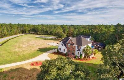 Pawleys Island Single Family Home For Sale: 373 Beaumont Dr.