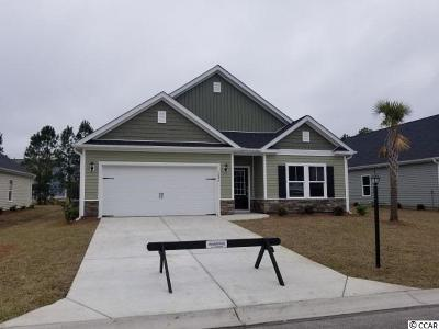 Myrtle Beach Single Family Home For Sale: 1620 Palmetto Palm Dr.