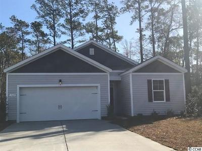 Pawleys Island Single Family Home For Sale: 162 Parkglen Drive