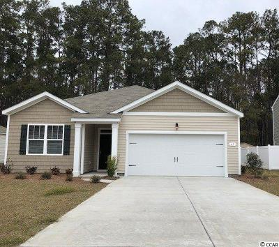 Pawleys Island Single Family Home For Sale: 61 Parkside Drive