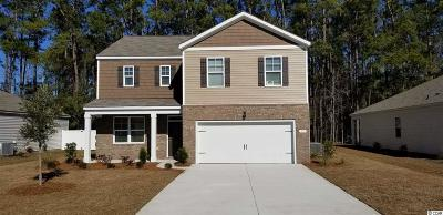 Pawleys Island Single Family Home For Sale: 39 Parkside Drive