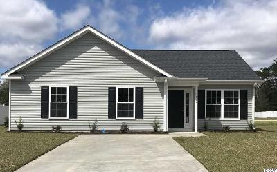 Myrtle Beach Single Family Home For Sale: 3664 Fountain Pointe Lane