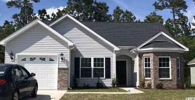 Myrtle Beach Single Family Home For Sale: 167 Clay Pond Village Ln.