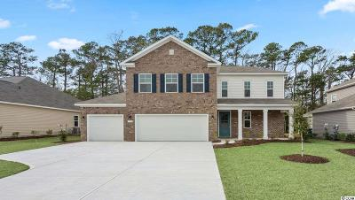 Single Family Home For Sale: 1116 Inlet View Dr.
