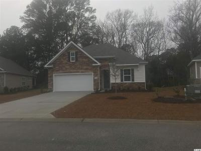 Single Family Home For Sale: 1132 Inlet View Dr.