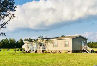 Conway Single Family Home For Sale: 8900 Pee Dee Hwy.