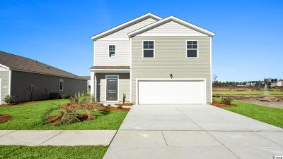 Myrtle Beach Single Family Home For Sale: 2744 Zenith Way