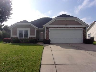 Myrtle Beach Single Family Home For Sale: 1101 Rookery Drive