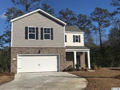 Pawleys Island Single Family Home Active-Pend. Cntgt. On Financi: 151 Parkglen Dr.