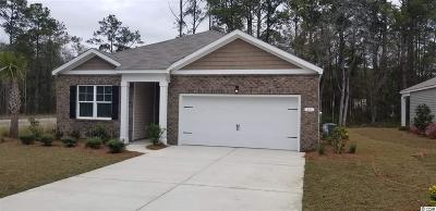 Pawleys Island Single Family Home For Sale: 11 Parkglen Dr.