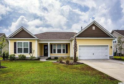 North Myrtle Beach Single Family Home For Sale: 1312 E Island Dr.
