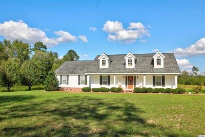 Horry County Single Family Home For Sale: 3931 Highway 319