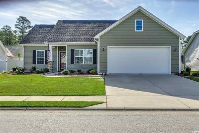 Little River Single Family Home For Sale: 569 Tourmaline Dr.