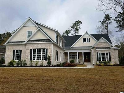 Georgetown County, Horry County Single Family Home For Sale: 604 Nautilus Dr.