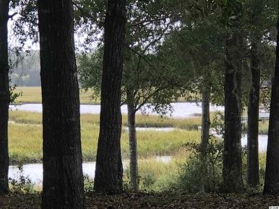 Georgetown County, Horry County Residential Lots & Land For Sale: 2254 Rum Runner Ct.