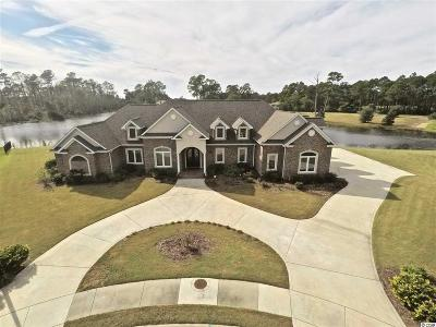 Georgetown County, Horry County Single Family Home For Sale: 1001 Clamour Ct.